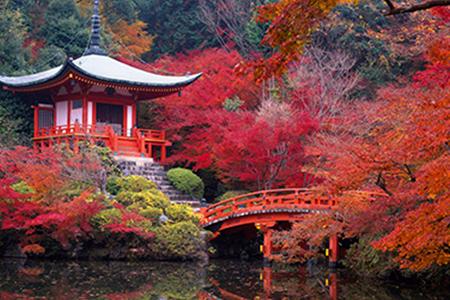 Япония с Востока на Запад (осень-зима)